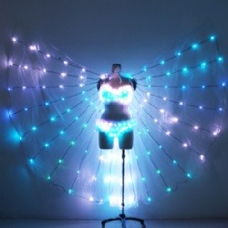 Led dance wings with led bra and pants